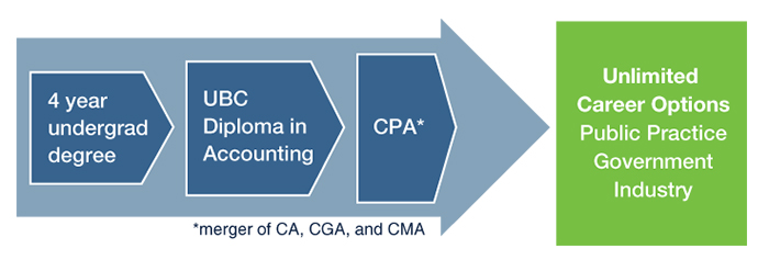 career path of chartered accountant
